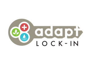 Adapt Lock-in Project